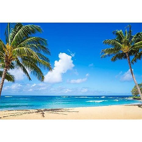 Fondale Fotografico A Tema Spiaggia Tropicale Palme Nuvole Blu Cielo