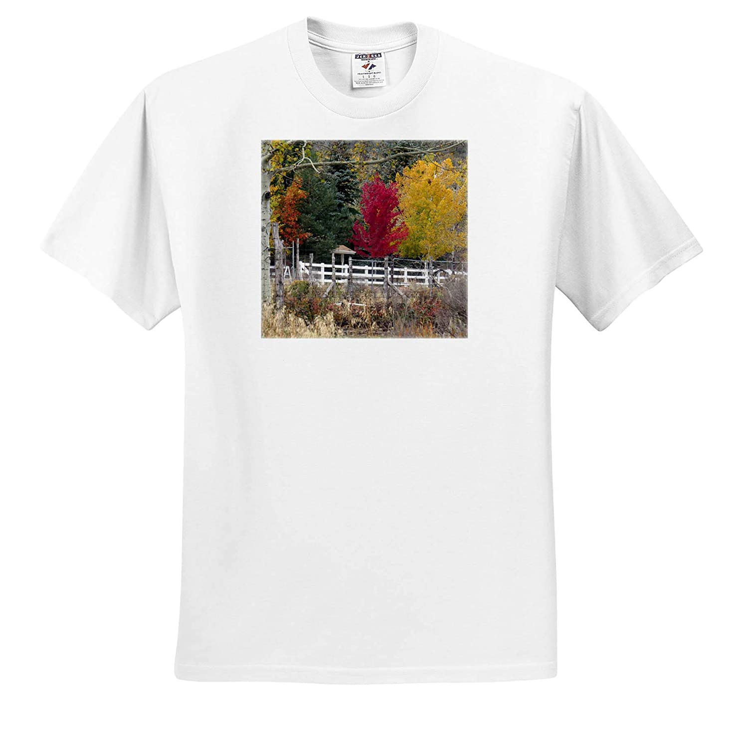 Fall Colors on Trees in Pine Valley Utah Adult T-Shirt XL 3dRose Jos Fauxtographee- Autumn ts/_318860