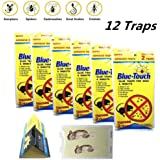 12 Traps (6 Pack) Blue Touch Sticky Mouse Traps, Mouse Glue Board Professional Sticky Mouse& Insect trap, Better Than JT Eaton, Victor Glue Board & Masterline,NON-TOXIC,Peanut Butter Scented