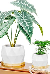 Set of 2 Modern Plant Pot with Wood Saucers Indoor Outdoor, Diamond Shaped White Flower Pots with Drainage and Plug, Garden Home Decor Flower Planter Ceramic Pots for Plants Succulent Cactus Herb