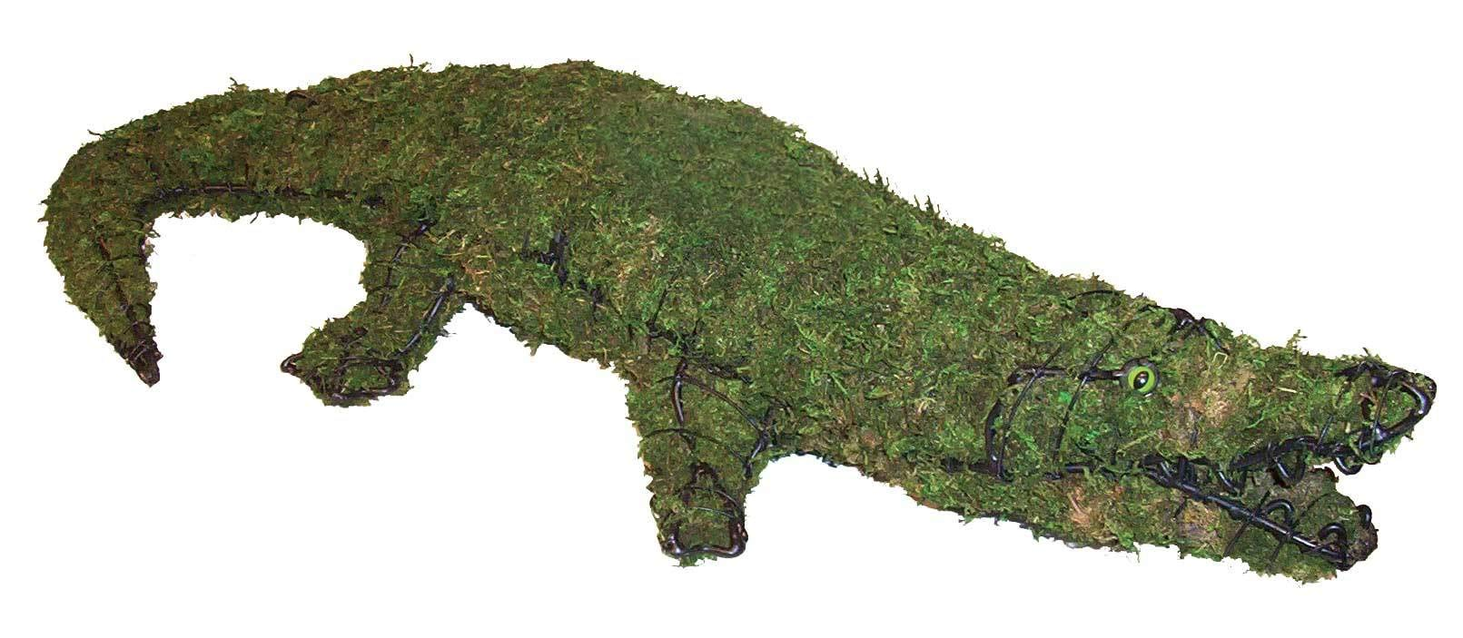 Alligator 9''x49''x20'' Topiary Sculpture - Wire Frame or Moss Filled