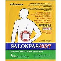 Salonpas Hot Capsicum Patch 1 Count