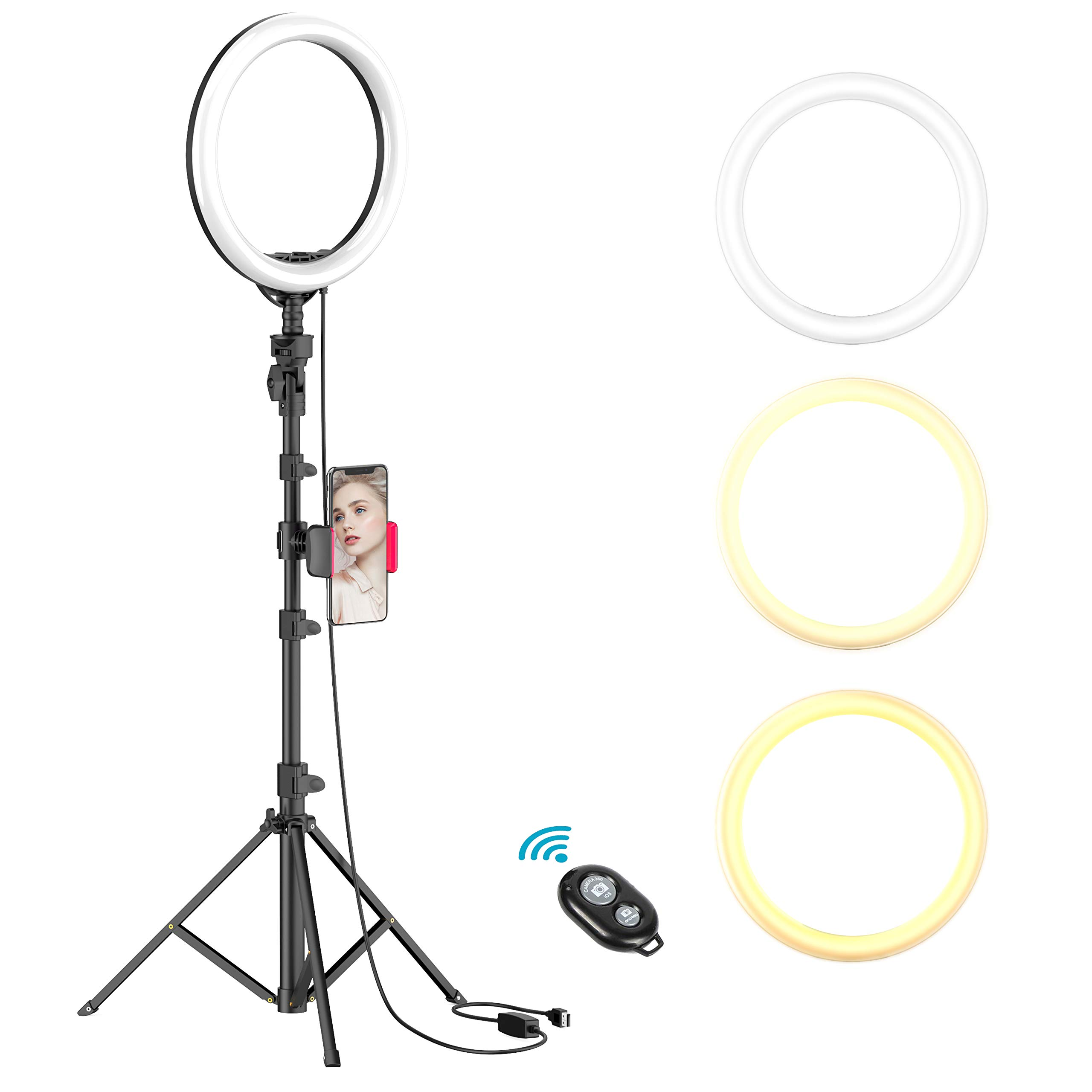 10'' Selfie Ring Light with Tripod Stand & Cell Phone Holder for Live Stream/Makeup, Dimmable Led Camera Beuty Ringlight for YouTube Video/Photography Compatible with iPhone and Android Phone(UPGRADED) by Erligpowht