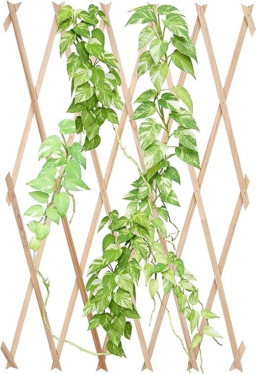 Jago Celosía de madera (soporte para plantas) para jardín, terraza ...