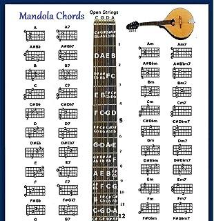 Amazoncom Baritone Ukulele Poster Dgbe Uke Musical Instruments