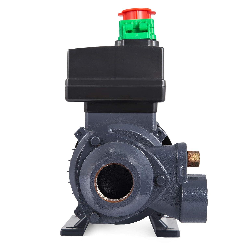 Mophorn Pompe Diesel /électrique Pompe /à Huile 600W Pompe /à Essence 40 L//min 2850 tr//min avec Jeu de Flexibles et Injecteur de Carburant 600W