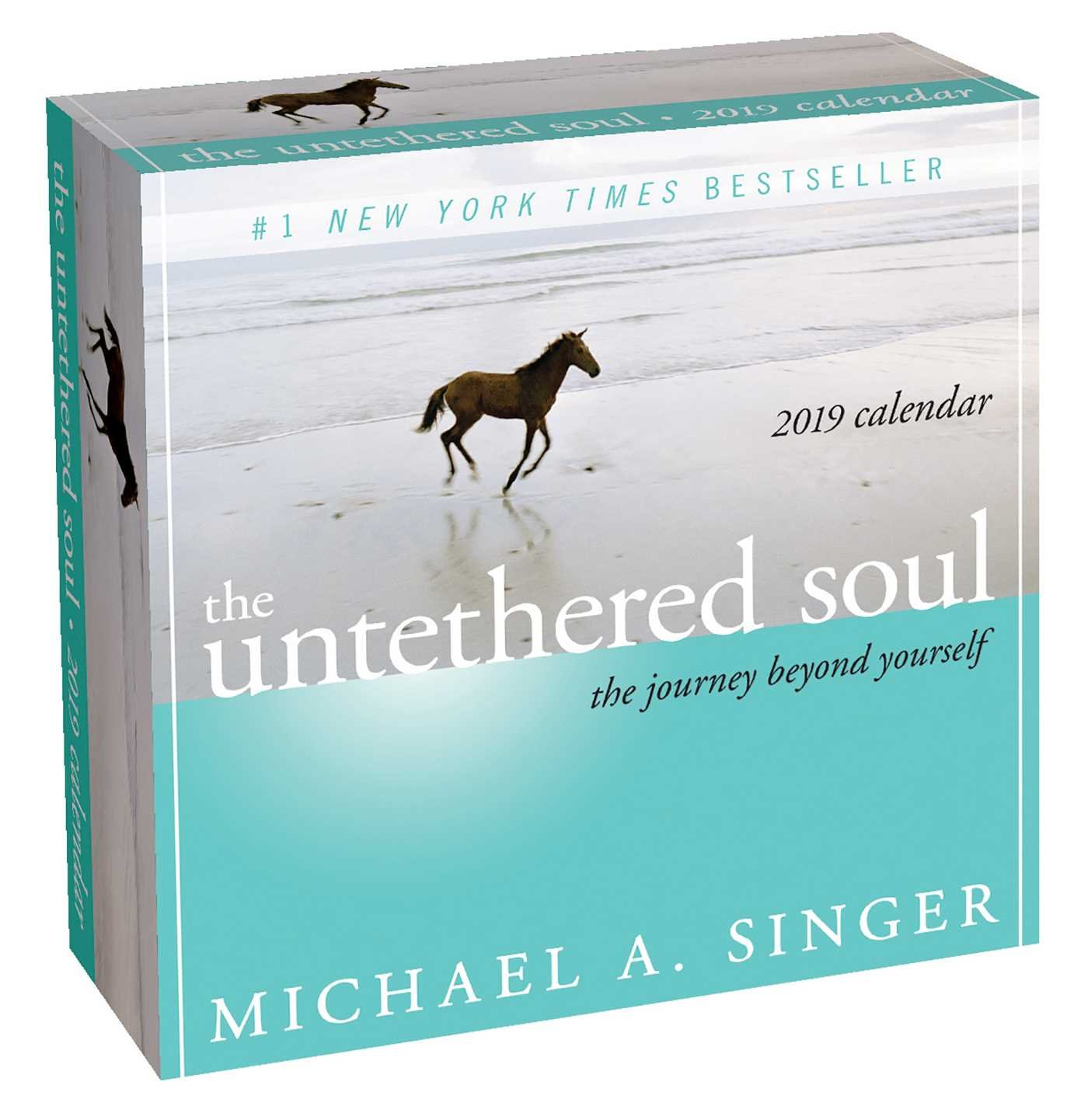 The Untethered Soul 2019 Day-to-Day Calendar: The Journey Beyond ...