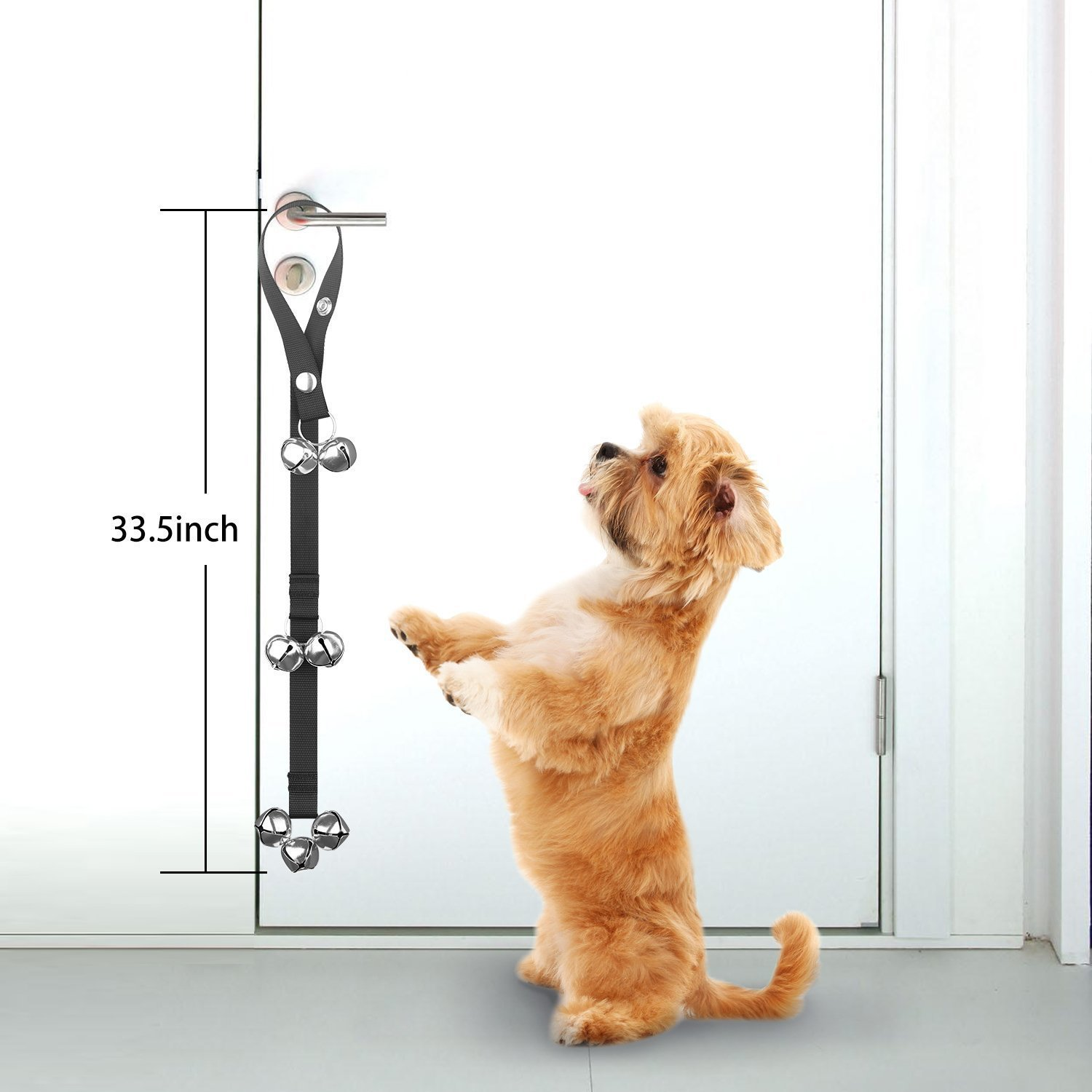 Amazon 2 Pack Dog Doorbells Premium Quality Training Great Dog