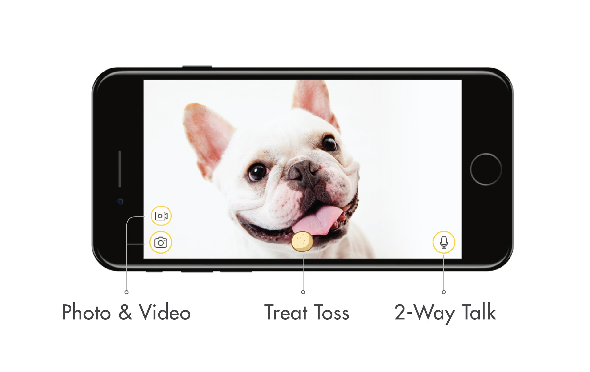 Furbo Dog Camera: Treat Tossing, Full HD Wifi Pet Camera and 2-Way Audio, Designed for Dogs, Compatible with Alexa (As Seen On Ellen) 3