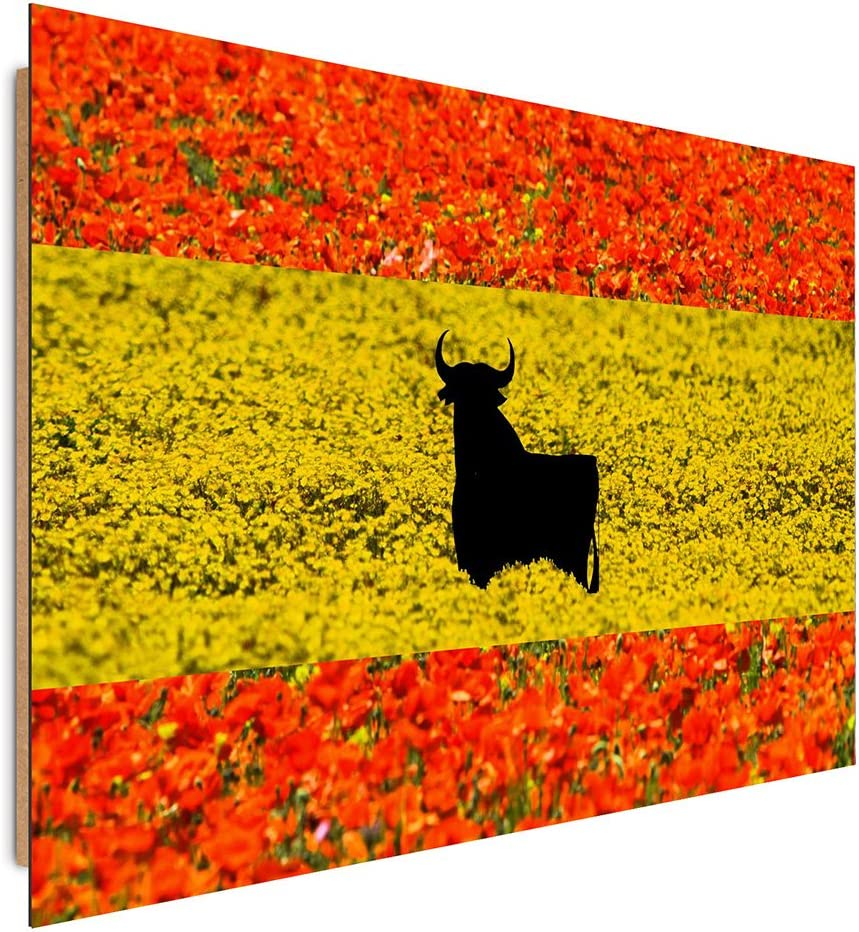 Feeby. Cuadro decoración - 1 Parte - 78x118 cm, Imagen Pintura Impresión Deco Panel,Bandera, ESPAÑA, Flores, Rojo, Amarillo: Amazon.es: Hogar