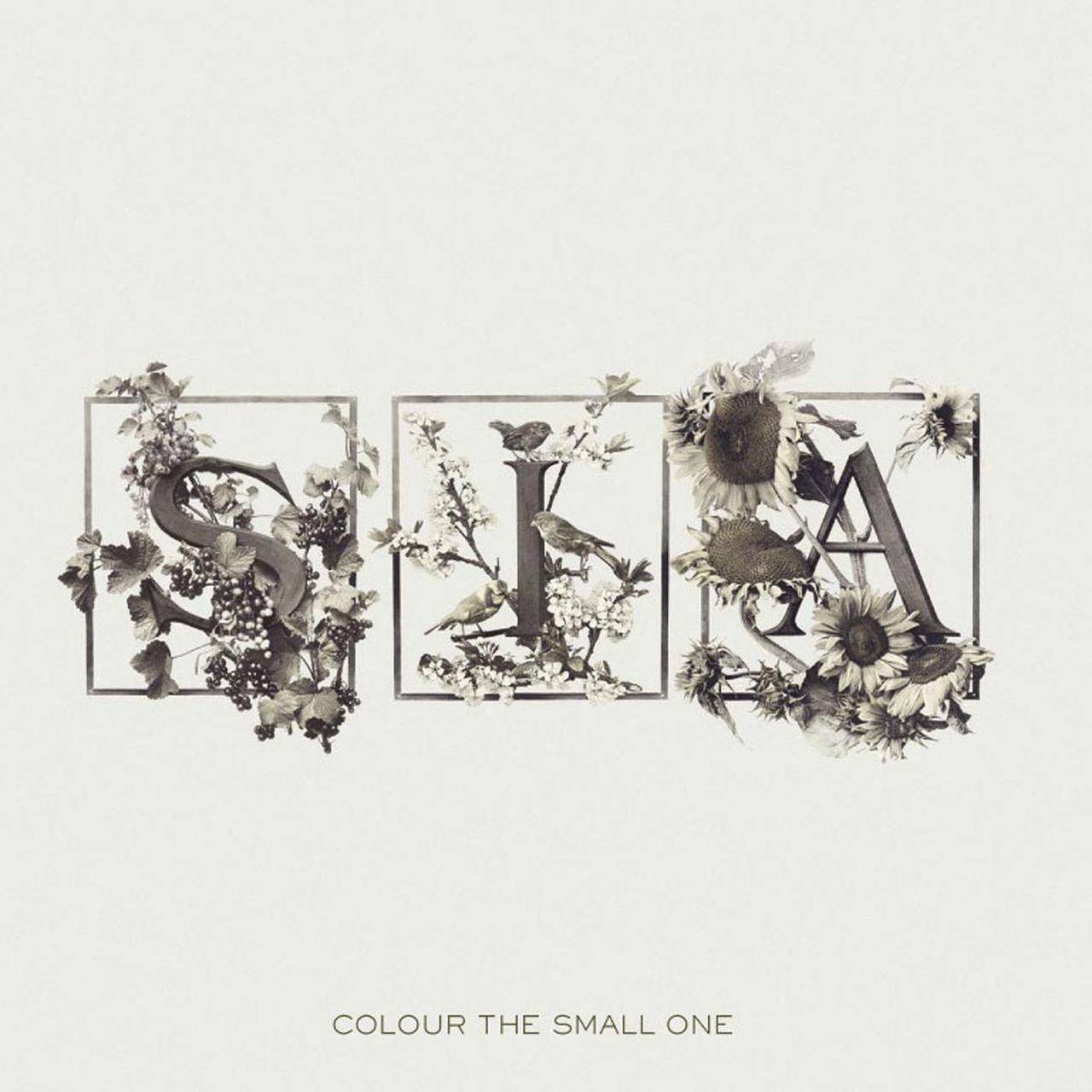 Vinilo : Sia - Colour the Small One (LP Vinyl)