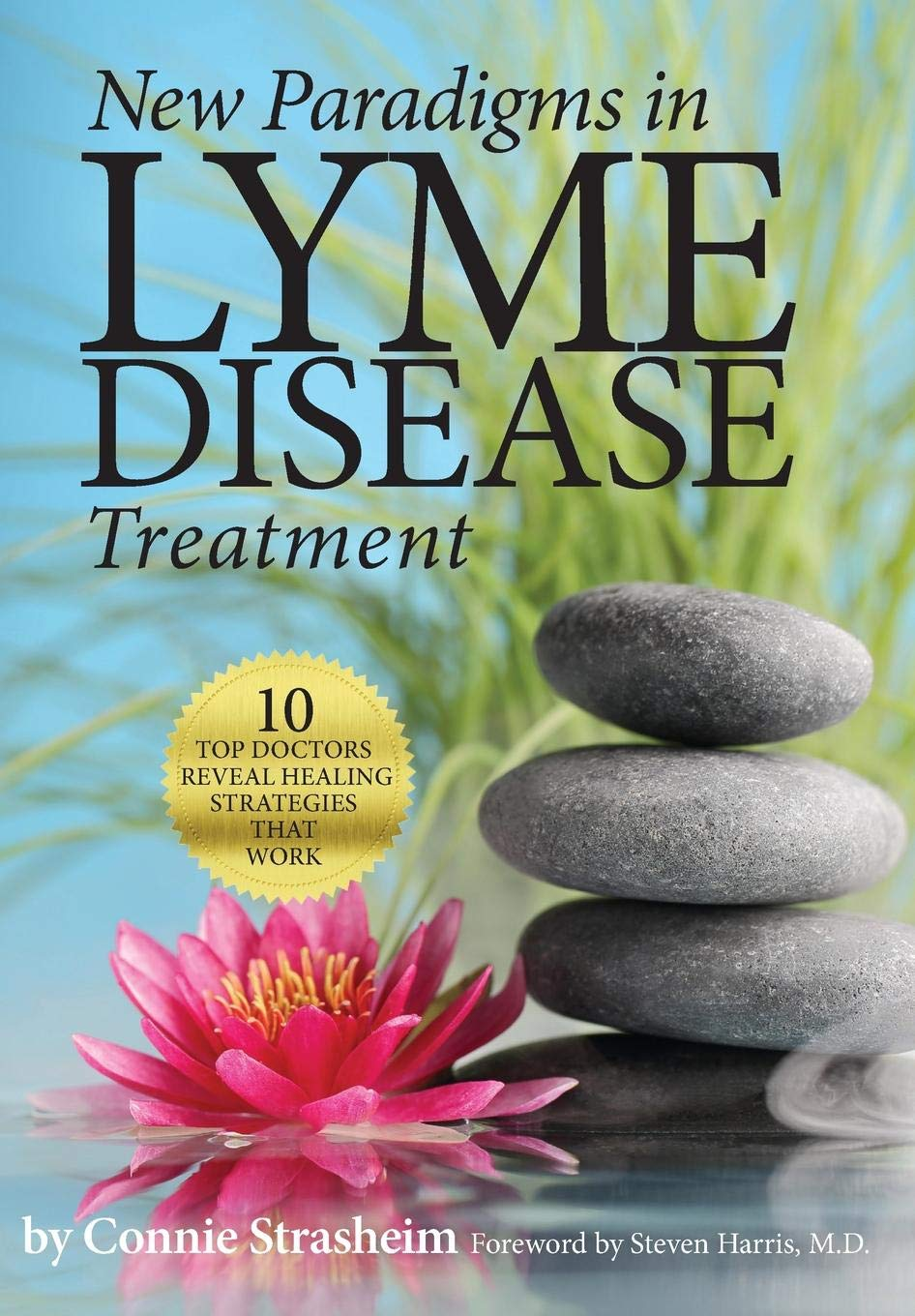 New Paradigms in Lyme Disease Treatment: 10 Top Doctors