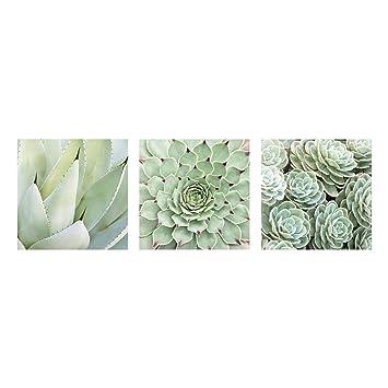 Bilderwelten Impression Sur Verre Cactus Trio 4 Parties Image