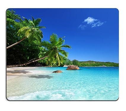 amazon com tropical paradise sunshine beach coast sea palm trees