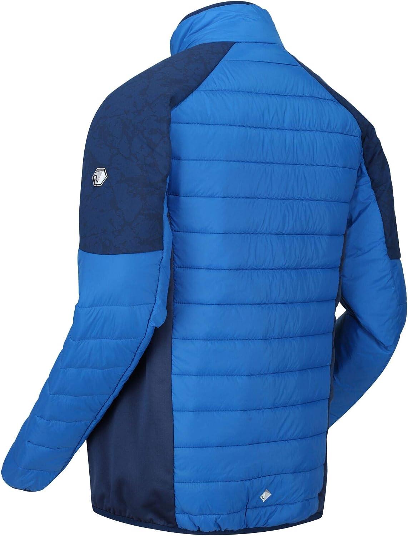 Hombre Regatta Halton III Lightweight Alpaca Wool-Insulated Water Repellent Puffa Jacket Chaquetas Acolchadas