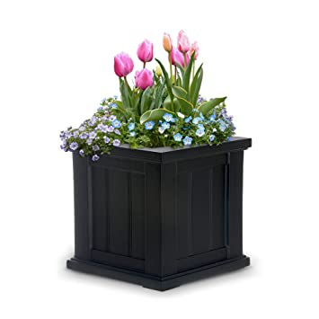 Amazon Com Mayne 4836b Cape Cod Planter Black 14 Inch Self