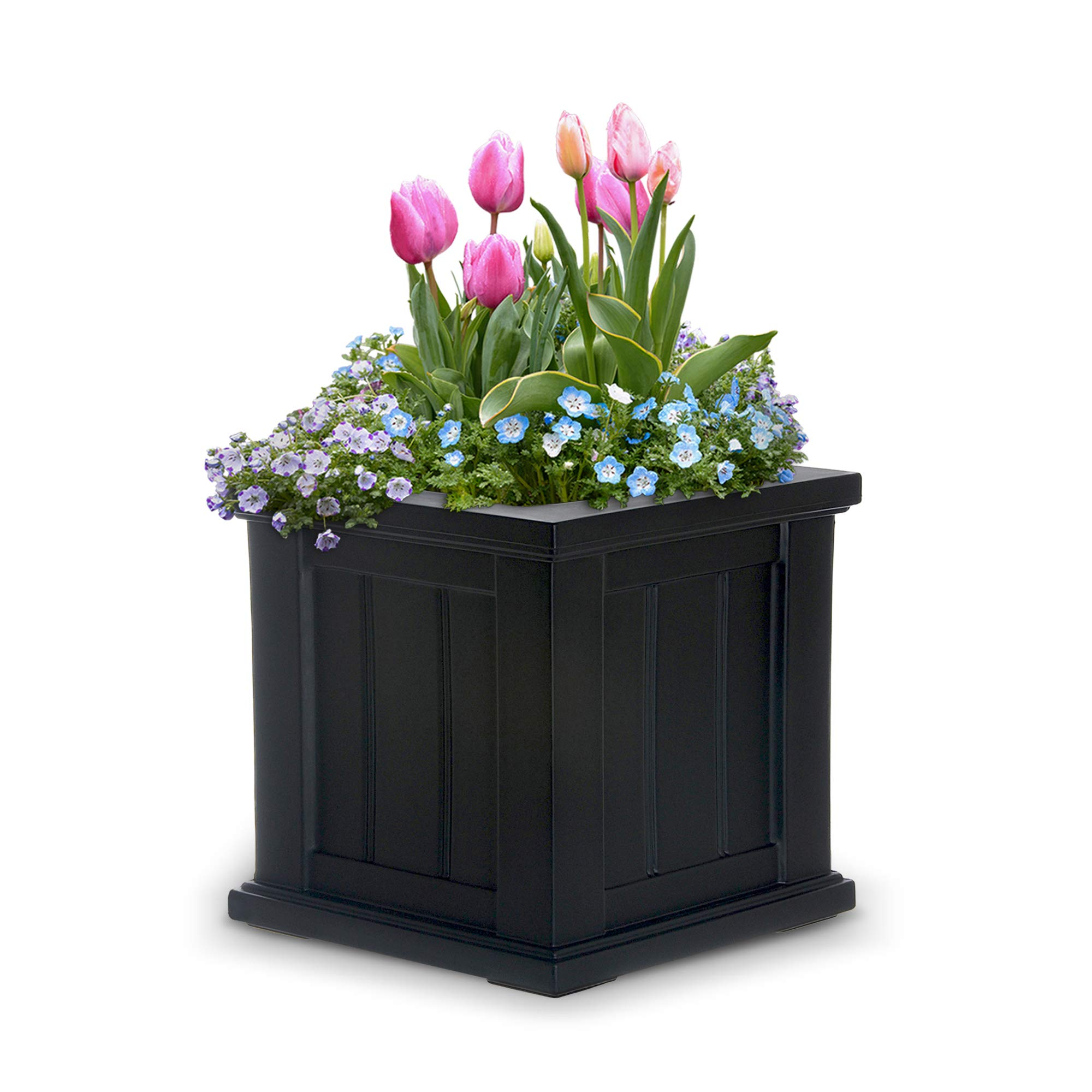 Mayne 4836B Cape Cod Planter, Black, 14 -Inch