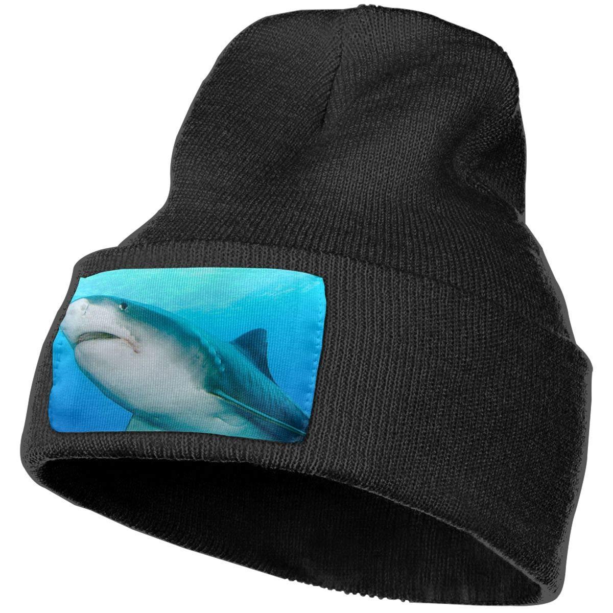 SHARP-Q Shark