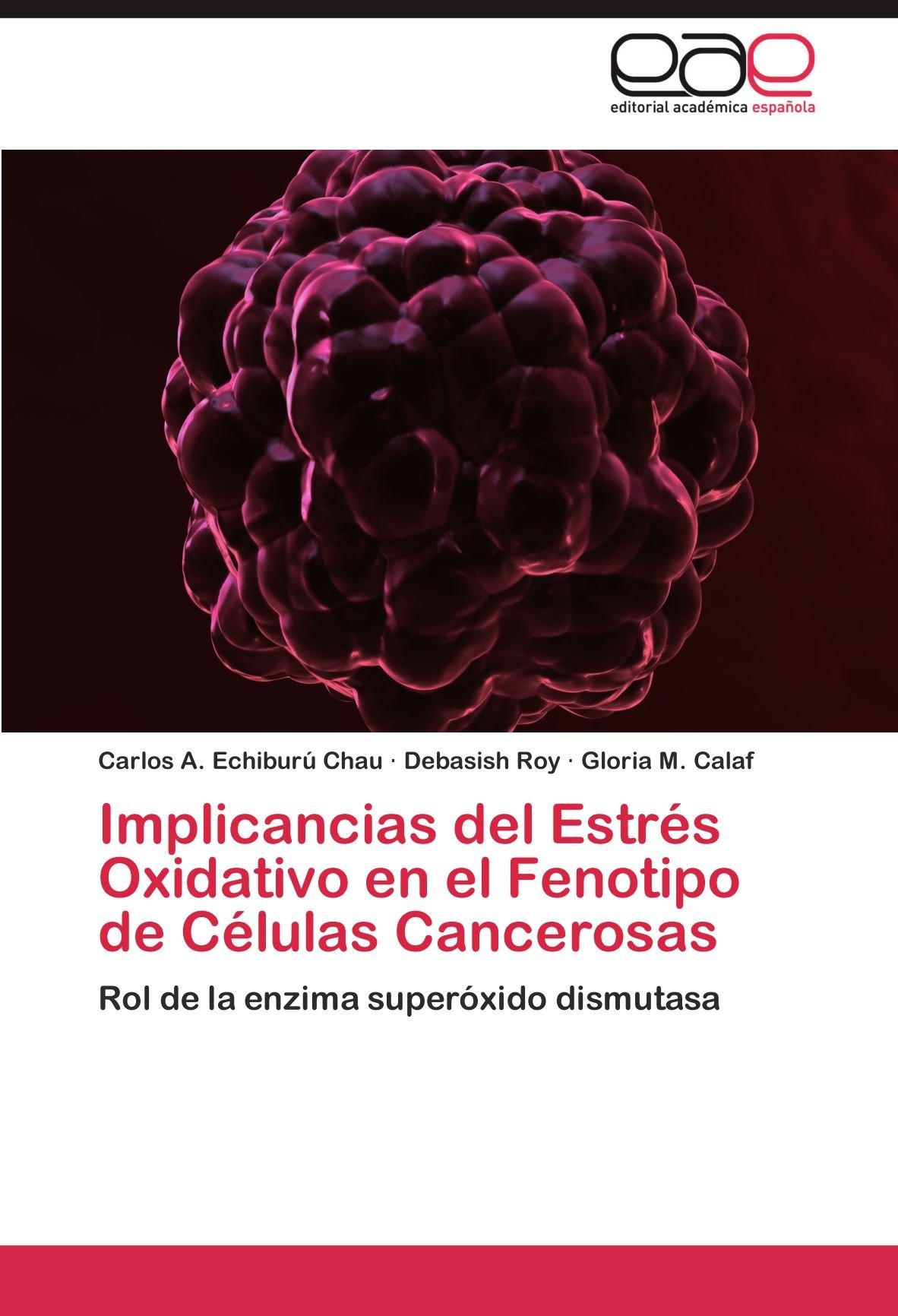 Implicancias del Estrés Oxidativo en el Fenotipo de Células ...