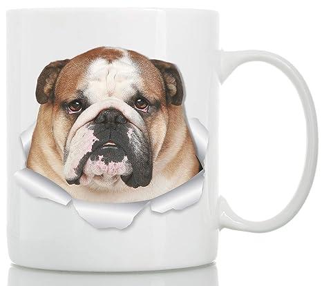 Amazon.com: Taza de cerámica con diseño de bulldog inglés ...