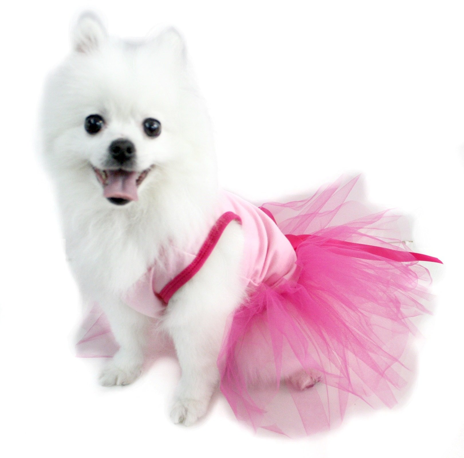 Puppy Clothes Dog Dress Light Pink Cotton Top Hot Pink Tutu Animal Wear (X-Large)