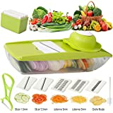 Vegetable Slicer/Mandoline Slicer-Vegetable Cutter Julienne Potatoes Onion/Cucumber Cutter Cheese Grater Shredder +Peeler&brush +Food Container w/ 5 Stainless Steel Blades Anti-skip Fixed Handle