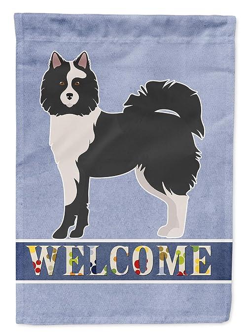 Caroline Treasures CK3644CHF ELO Dog - Lienzo para Exterior ...