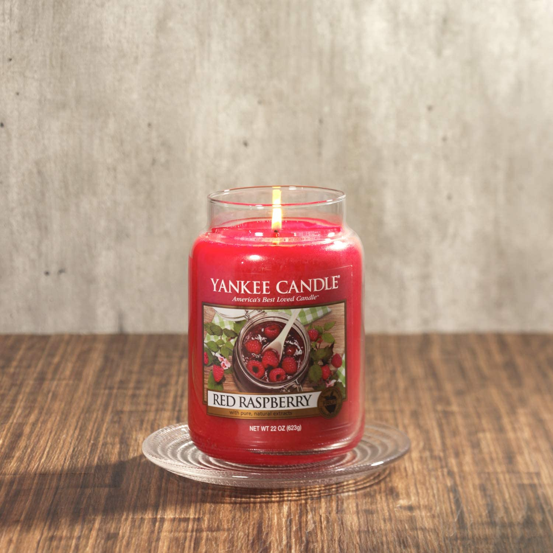 Yankee Candle Candele per la Luce del T/è Giungla Tropicale