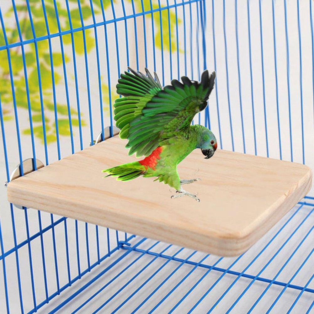 Hinmay Bird Perchoir support plate-forme jouet, bois naturel Playground Paw broyage pour animal domestique Oiseau Hamster Ecureuil Perroquet Oiseau Perchoir, Pet Bird Perchoir plate-forme support Bois