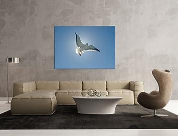 Glasbild Motiv Vogel Wohnzimmer Modern querformat Rechteckig ...
