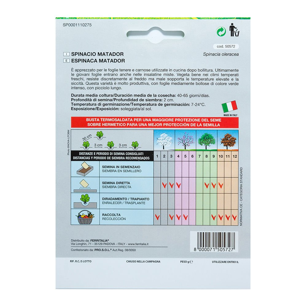 Semillas Espinaca Temprana (8 Gramos): Amazon.es: Jardín