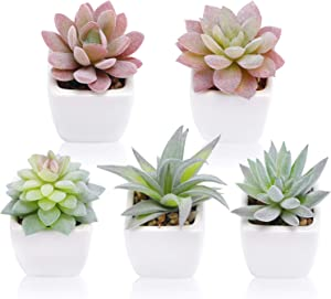 Funarty Artificial Succulent Plants Fake Succulent Plants in Pot Mini Faux Succulent for Home Decor Set of 5