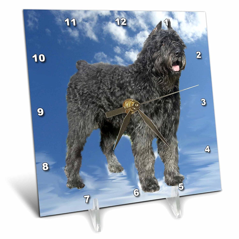 Bouvier Des Flandres 6x6 Desk Clock 3dRose Dogs Bouvier dc/_4431/_1
