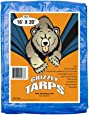 Grizzly Tarps 16 x 20 Feet Blue Multi Purpose Waterproof Poly Tarp Cover 5 Mil Thick 8 x 8 Weave