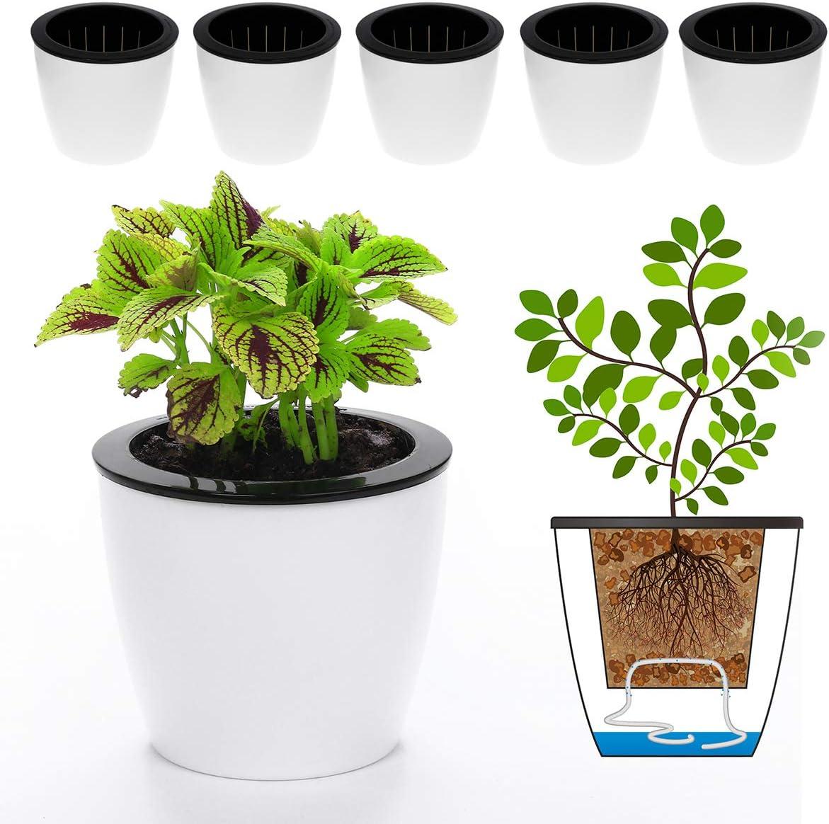 DElf 6 Pack 6.7 Self Watering Planter Wicking Pots for Indoor Golden Devil s Ivy, African Violet, Ocean Spider Plant, Orchid, White Color