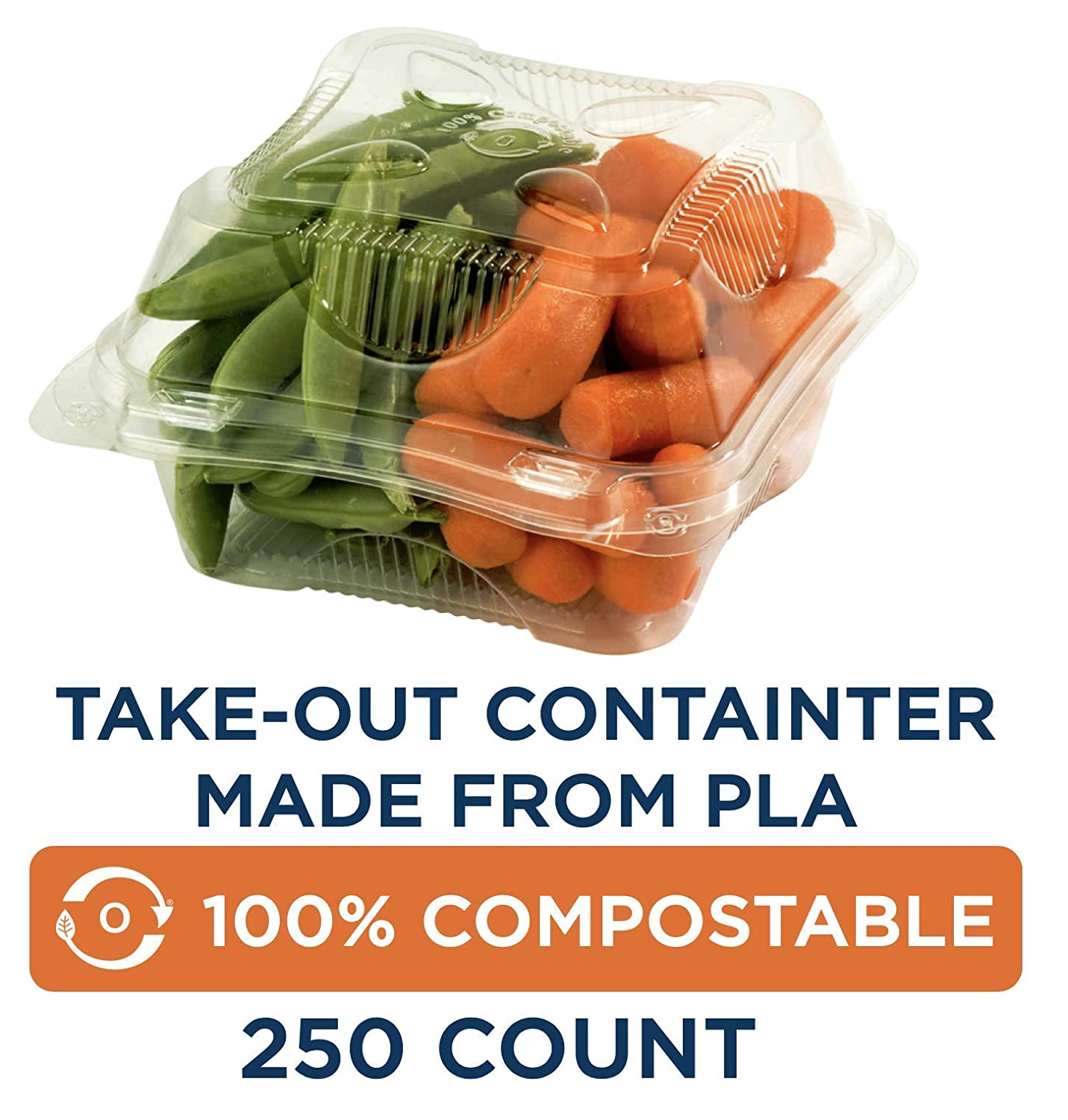 "100% Compostable Takeout Containters by World Centric, Made from Ingeo PLA, Hinged Clamshell for Takeout Food, 6"" x 6"" x 3"", Clear (Pack of 250)"