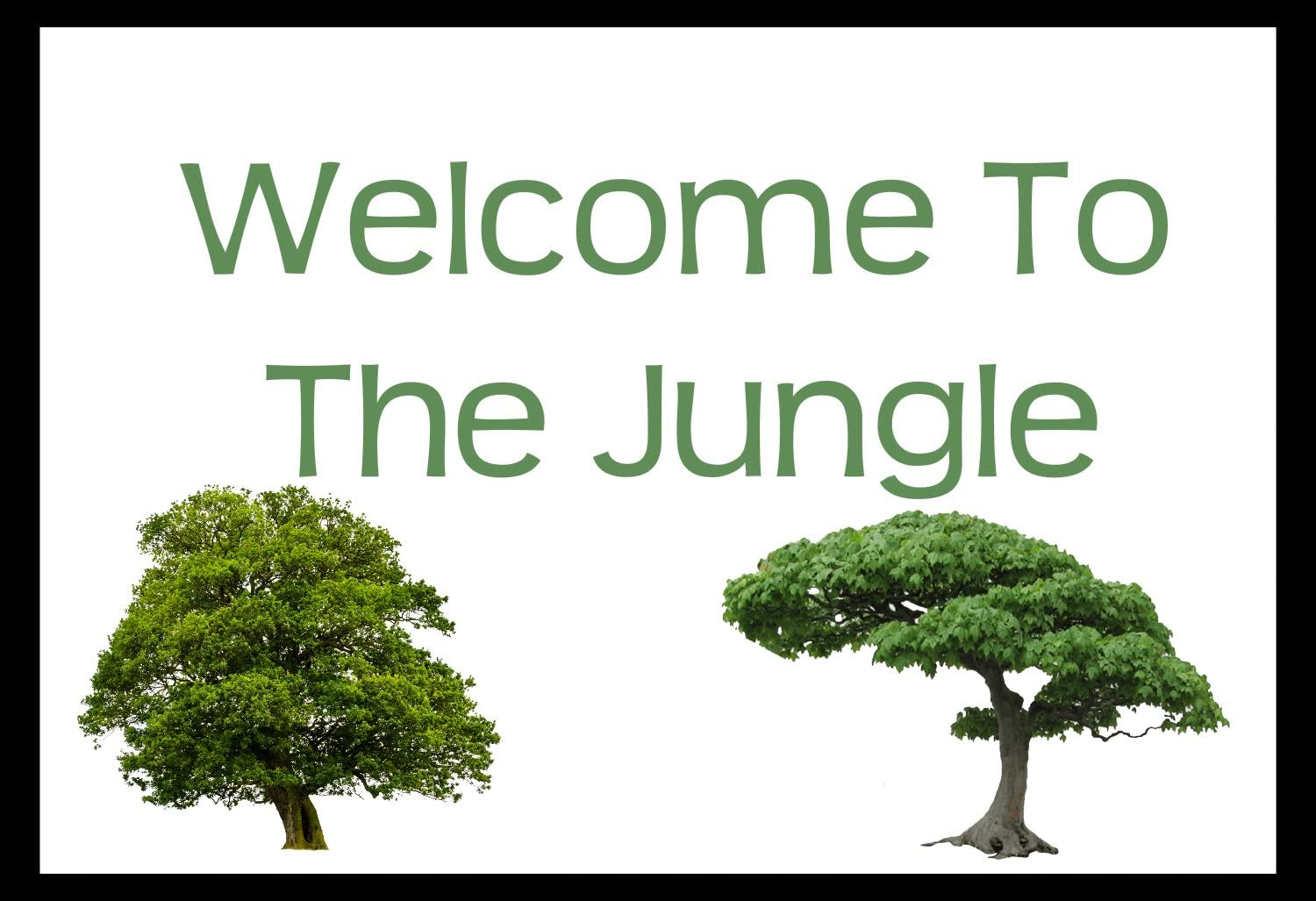 Fuhr Photograpy Welcome to The Jungle Quote Design Colorful Home Decor Country Rustic Wood Sign Minimalist Black and White Clean Classic Wall Art