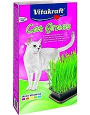 Vitakraft - 24031 - Herbe à Chat - Cat-Gras