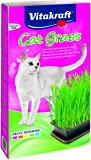 Viakraft Cat Grass - 120 gm