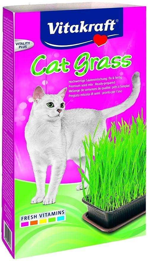 VITAKRAFT 1571260031 - hierba para gato
