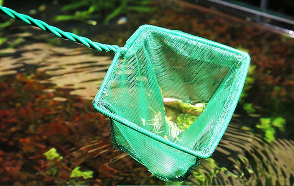 Chytaii Aquarium Fischkescher Aquariumkescher Aquarium Fische Fangnetz f/ür Aquarium Fisch Tank Gr/ün 6 Zoll
