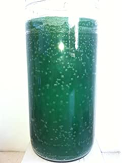 14 DAY GREEN UNSCENTED CANDLE IN GLASS