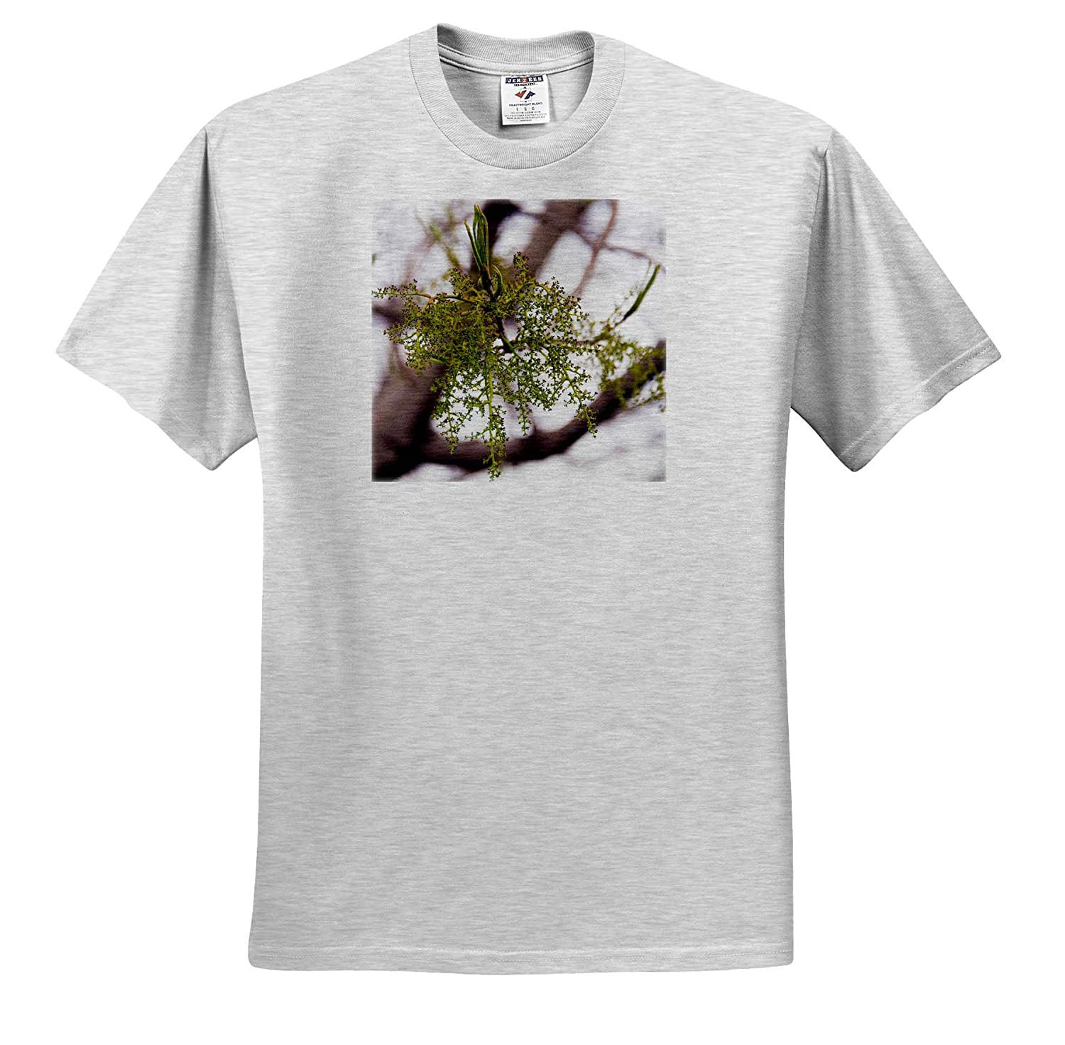 3dRose Jos Fauxtographee Tree Life A Tree just Coming to Life with Buds on Branches T-Shirts
