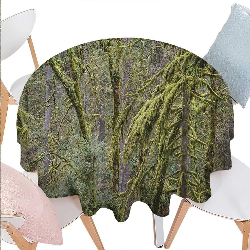 BlountDecor テーブルクロス レインフォレスト 洗濯可能 朝の太陽 木に霧 山の森 森のモス 天然パラダイス 防水テーブルクロス 36インチx36インチ グリーンブラウン D70