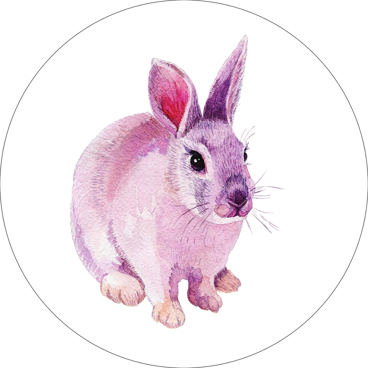 Cottontail Bunny Rabbit Home Wall Shelf Decor Animal Decorations Watercolor Round Sign - 12 Inch, Plastic