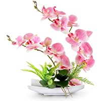 YOBANSA Decorative Real Touch Silk Orchid Bonsai Artificial Flowers with Imitation Porcelain Flower Pots Phalaenopsis…