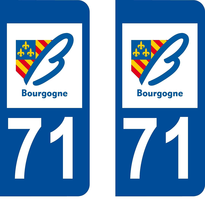 SAFIRMES 2 Stickers Autocollant Style Plaque Immatriculation d/épartement 93