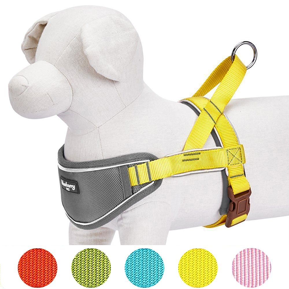 Blueberry Pet 5 Colors Soft & Comfy 3M Reflective Strips Padded Dog Harness Vest, Chest Girth 24.5'' - 29.5'', Sunshine Yellow, M/L, Nylon Adjustable Training Harnesses for Dogs