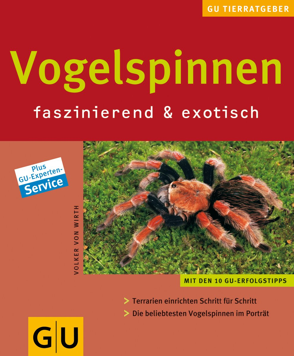 Vogelspinnen faszinierend & exotisch