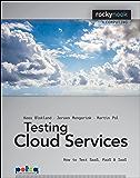 Testing Cloud Services: How to Test SaaS, PaaS & IaaS (Rocky Nook Computing)